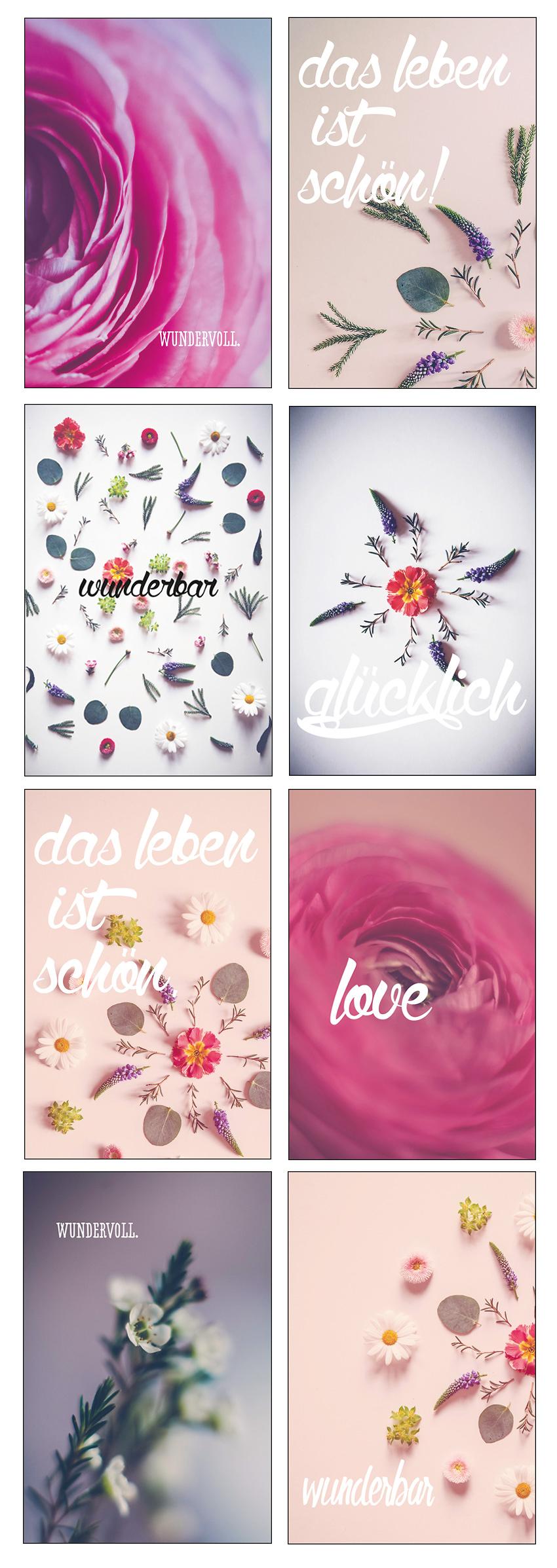 Postkarten aus Öhringen